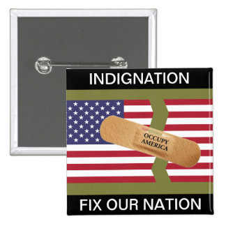 INDIGNATION FIX OUR NATION PINS