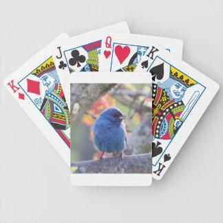 Indigo Bunting Bicycle Playing Cards