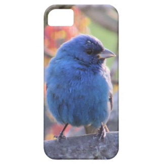 Indigo Bunting Case For The iPhone 5