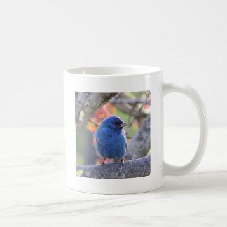 Indigo Bunting Coffee Mug