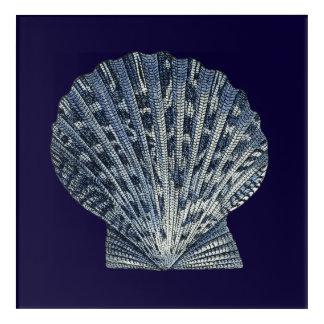Indigo Shells VIII Acrylic Print