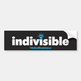 Indivisible Bumper Sticker