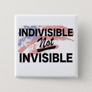 Indivisible NOT Invisible Square Button