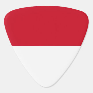 Indonesia Flag Guitar Pick