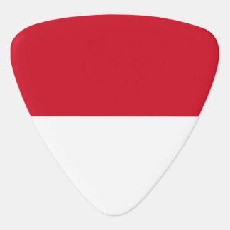 Indonesia Flag Guitar Pick