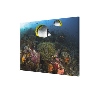 Indonesia, Komodo National Park. Lined Gallery Wrapped Canvas