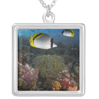 Indonesia, Komodo National Park. Lined Square Pendant Necklace