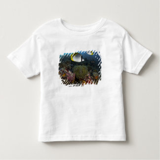 Indonesia, Komodo National Park. Lined T Shirts