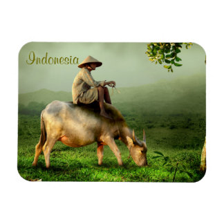 Indonesia Scenic landscape with Buffalo and Farmer Magnet