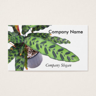Indoor Plant Business Card