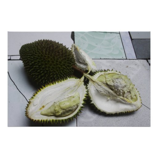 Infamous Durian Fruit Poster