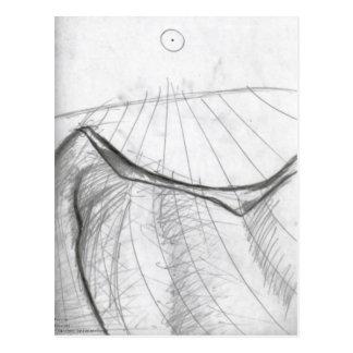 infinitefinitudes postcard