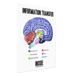 Information Transfer Inside Brain Anatomy Humor Canvas Print