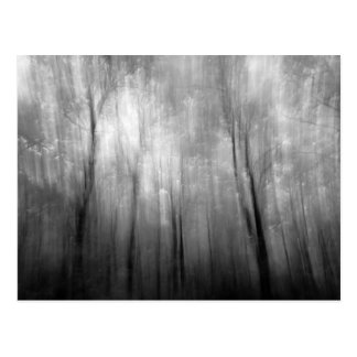 infrared abstract postcard