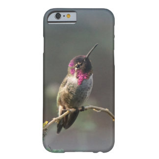 innocent barely there iPhone 6 case