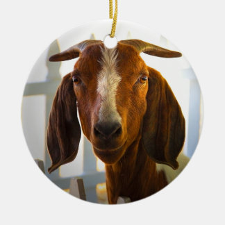 Inquisitive Goat Circle Ornament 2