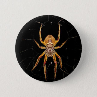 insect macro spider colombia 2 inch round button