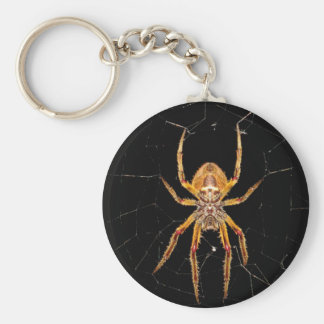 insect macro spider colombia keychain