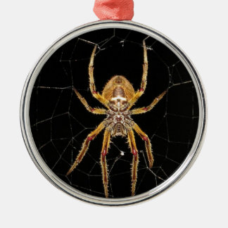 Insect Macro Spider Colombia Metal Ornament