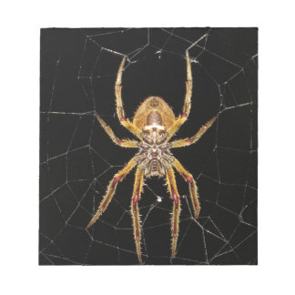 Insect Macro Spider Colombia Notepad