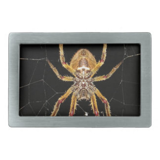 Insect Macro Spider Colombia Rectangular Belt Buckle