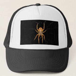 insect macro spider colombia trucker hat