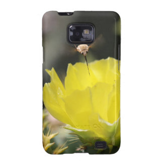 Insect on South Texas Cactus Flower Photograph Samsung Galaxy S2 Cases