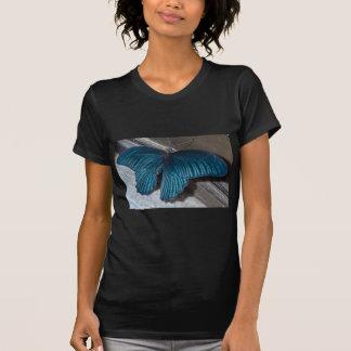 insecte bleu de papillon pilotant de belles ailes tee-shirt