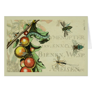 Insects Bugs Fruit Card