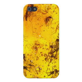 Insects in amber iPhone 5 covers