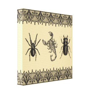 Insects Vintage Shabby Chic Halloween Wall Art Gallery Wrapped Canvas