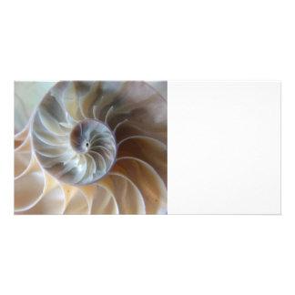 Inside Nautilus Photo Card