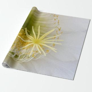 Inside of an Echinopsis in bloom macro