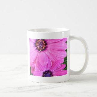 Inside of Pink Purple Gerbera Daisy Flower Nature Basic White Mug