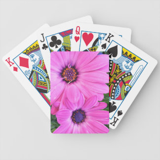 Inside of Pink Purple Gerbera Daisy Flower Nature Poker Deck