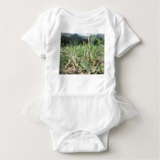 Inside, the lush green grass sprouts everywhere baby bodysuit