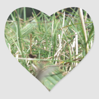 Inside, the lush green grass sprouts everywhere heart sticker