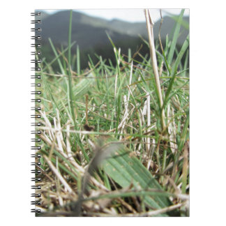 Inside, the lush green grass sprouts everywhere notebook