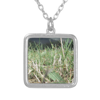 Inside, the lush green grass sprouts everywhere silver plated necklace