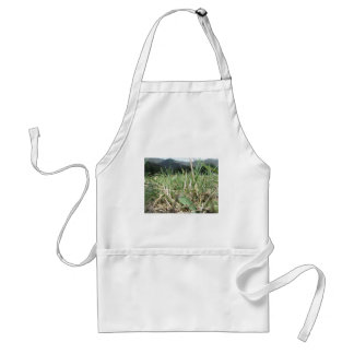 Inside, the lush green grass sprouts everywhere standard apron
