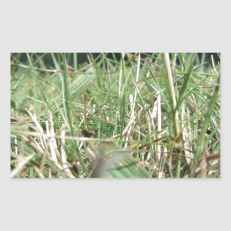 Inside, the lush green grass sprouts everywhere sticker