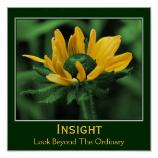 Insight Flower Inspirational Motivational Poster