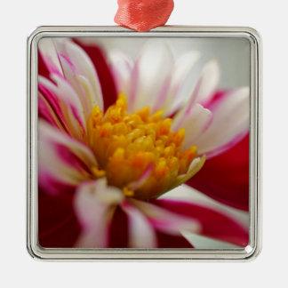 Inspiration Silver-Colored Square Ornament