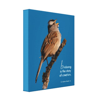 "Inspirational ""Birdsong is the Story of Creation"" Canvas Print"