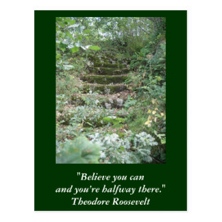 Inspirational card. Quote by Roosevelt Postcard