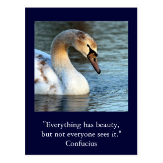 Inspirational card Quote Confucius Beauty 1 Postcard