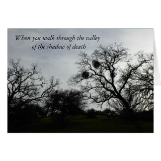 Inspirational Comfort Card: Oaks against gray sky Card