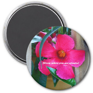 Inspirational floral decorated magnet