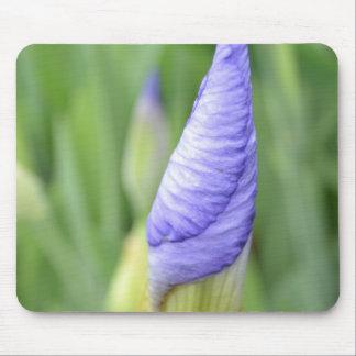 Inspirational Iris Mousepads