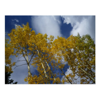Inspirational Postcards - Colorado Gold